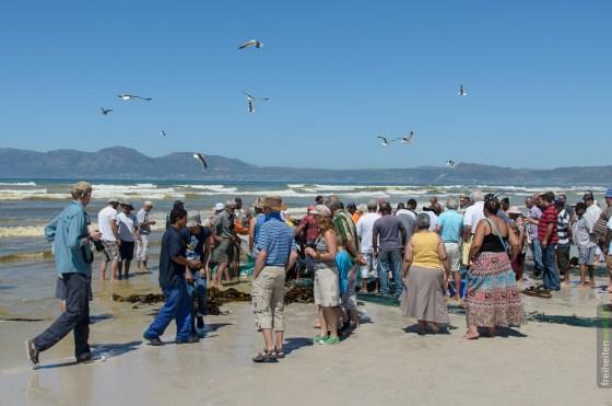 Touristen in Südafrika bei Fish Hoek