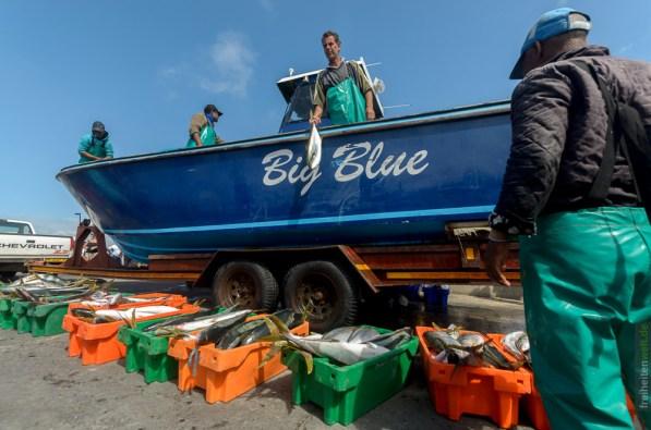 Fischer von Struisbaai