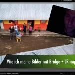 Wie ich meine Bilder über Bridge in Lightroom importiere