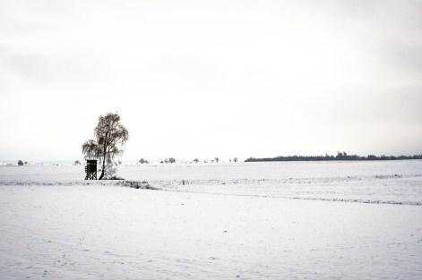 Januar 2021 - Schneewanderung