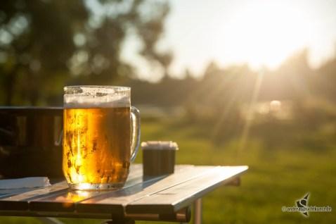 Bier im Abendlicht