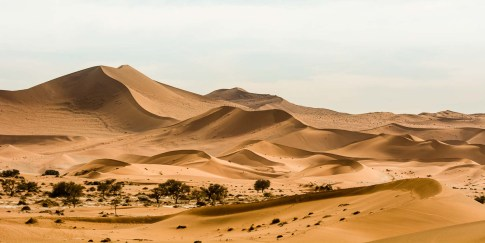 Rote Wüstendünen bei Sossusvlei Namibia