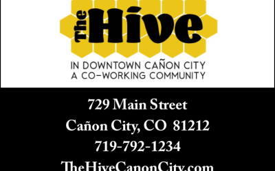 Community Partner Spotlight: The Hive