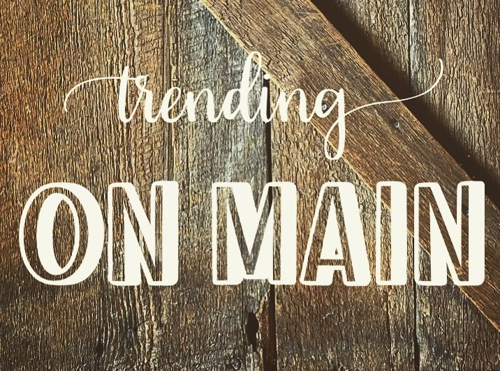 Community Partner Spotlight: Trending on Main