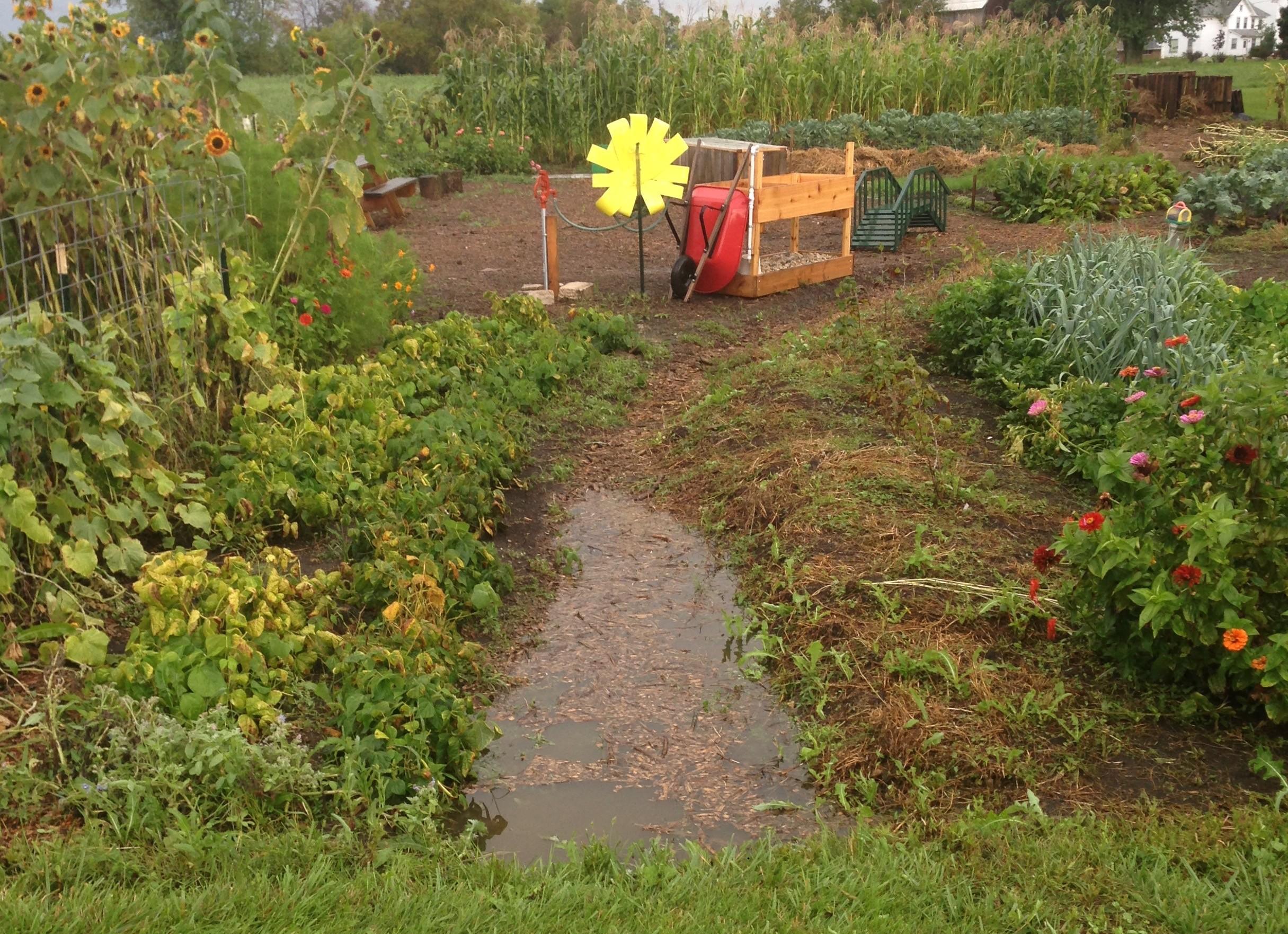 Fremont Township Community Garden