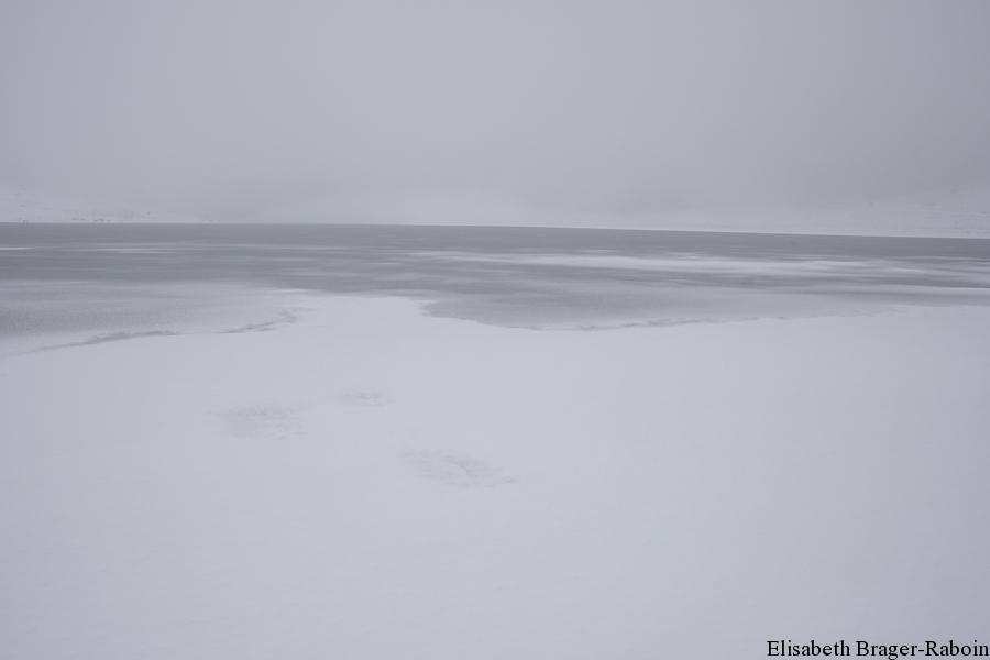 Lac des Pises - Mont Aigoual