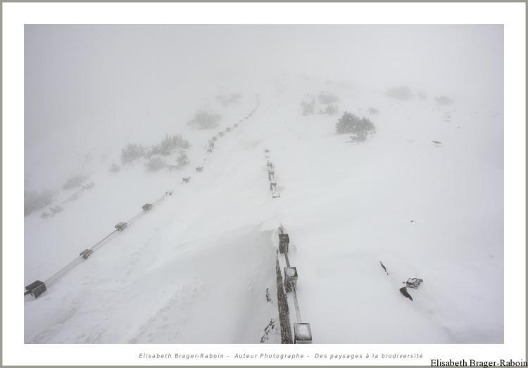 Du haut de l'observatoire du Mont Aigoual
