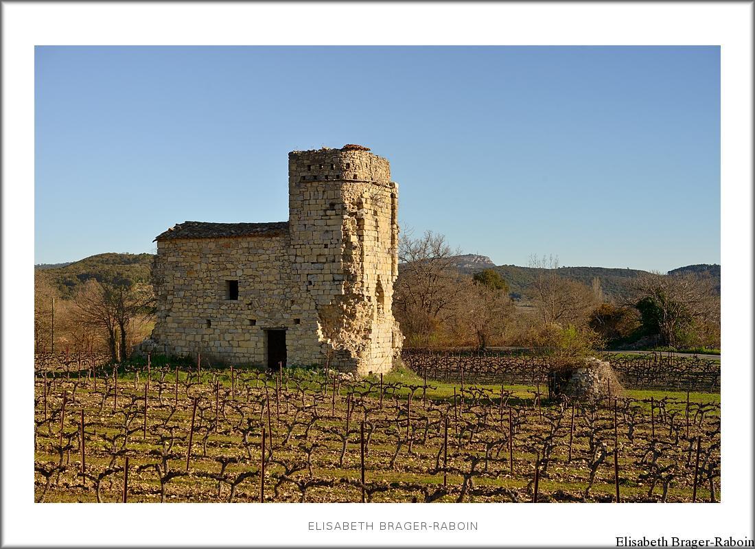 Église au milieu des vignes (ruine) Durfort