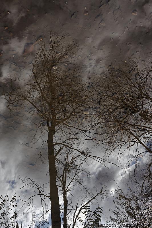 Reflets : Entre Ciel et Terre