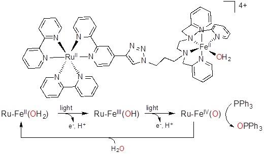 Structure du catalyseur d'oxydation et mécanisme simplifié pour l'activation de ce catalyseur avant le transfert de l'atome d'oxygène pour l'oxydation. © Frédéric Banse