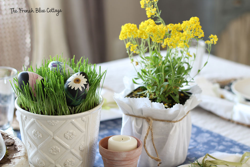 Potted flowers and painted eggs on the Easter table.