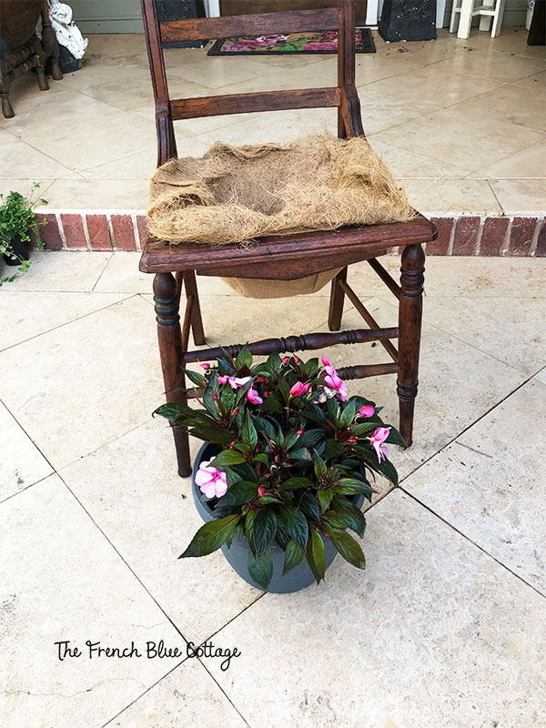 chair and potted plant