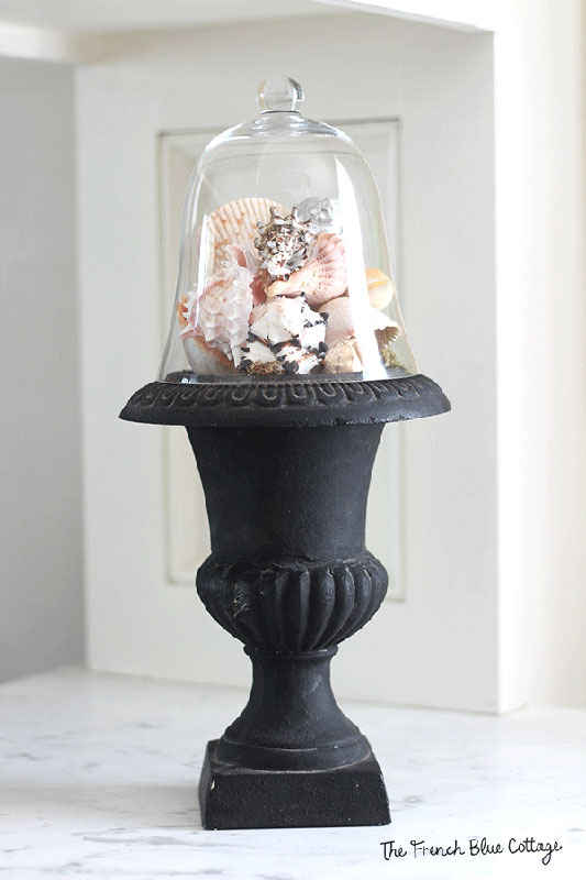 seashells under cloche on urn
