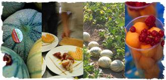 cavaiilon-melons