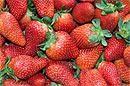 strawberries at Velleron