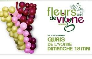 Auxerre Wine Fair 2014