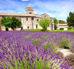 day5_img-mausole-lavender