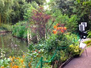 Giverny-day3-garden