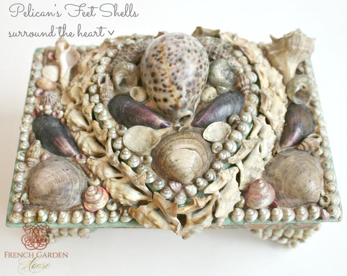 Victorian ShellworkPelicans Feet Shells