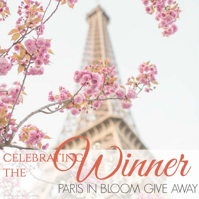 CELEBRATING THE WINNER OF THE PARIS IN BLOOM GIVEAWAY
