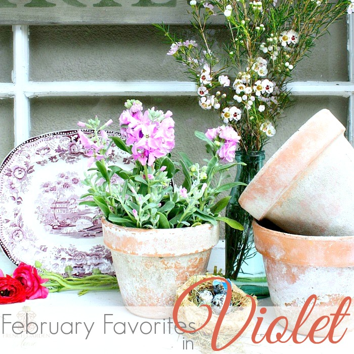 FEBRUARY FAVORITE THINGS | VIOLET