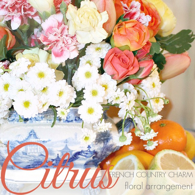 CITRUS FRENCH COUNTRY CHARM