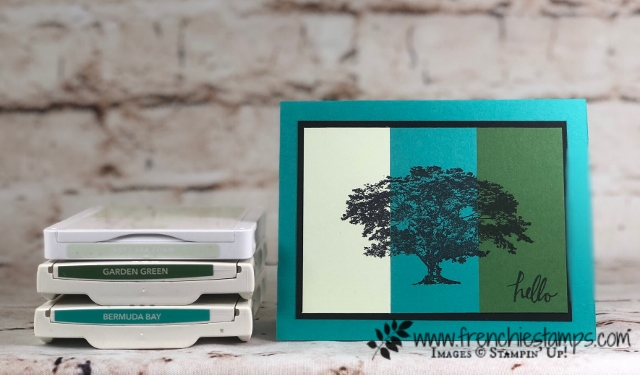 Stampin'Up! Color Coach, Passport Pals Color Coach Club, Frenchiestamps,  Rooted Nature,