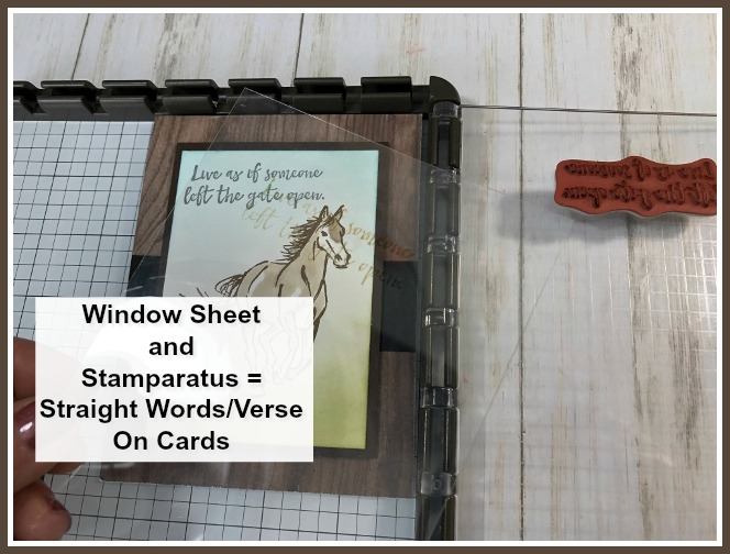 Great tip to use a window sheet and the stamparatus to align your greeting or sentiment on your cards. Stamp set Let It Ride.  All product by Stampin'Up! Available at frenchiestamps.com