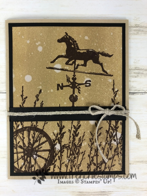 Learn how to make a water drop background. Stamp set is Country Road. All supplies by Stampin'Up! available at frenchiestamps.com