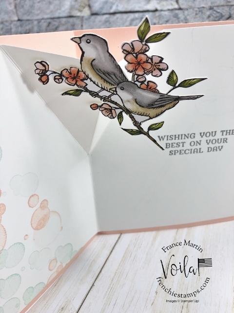 Pop Up Inside Card