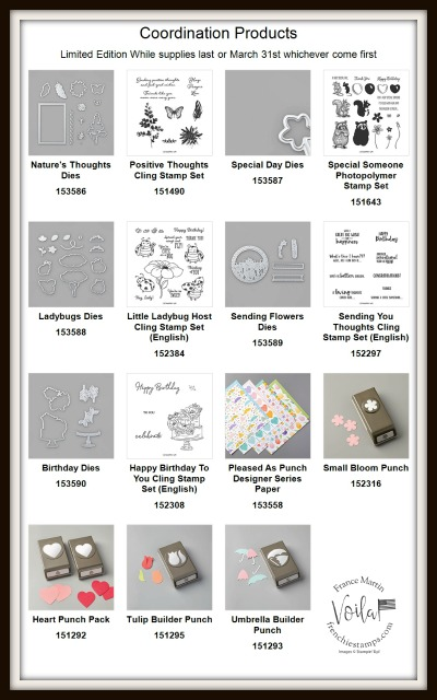 New release coordination product by Stampin'Up! February 4th 2020. Available at