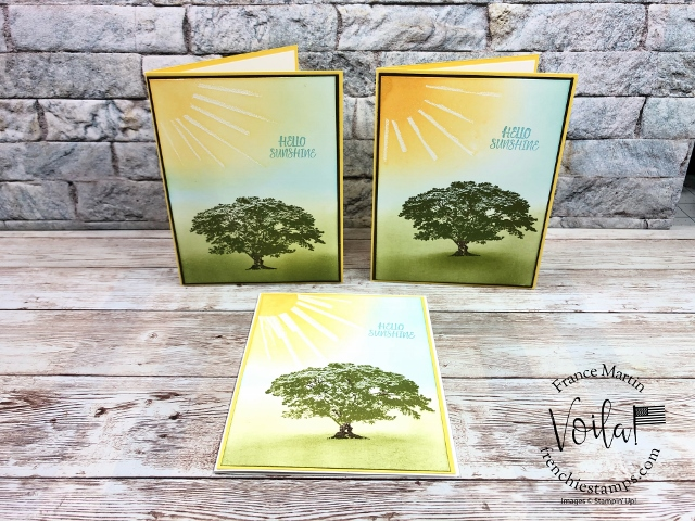 How make Ray of Sunshine on to  a card. Stamp set Rooted Nature.