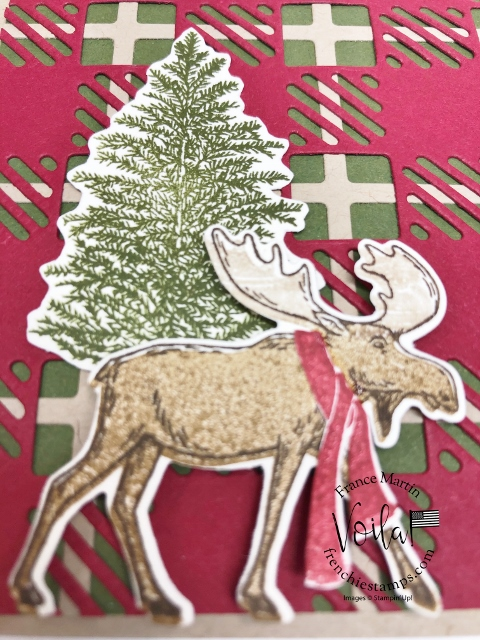 Best Plaid with Merry Moose for a Rustic Christmas Card.