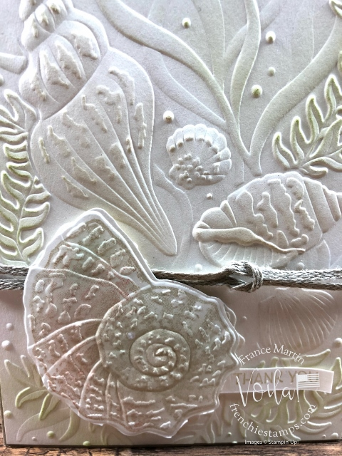 Seashells, Seaside Seashells Dies with Shimmery White and Pearlescent Paper