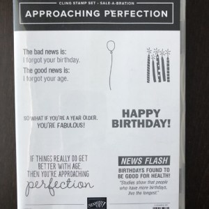 Approaching Perfection Stamp Set