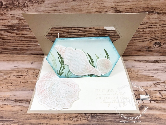 Seashells, Swing Pop Up Window Fun Fold.