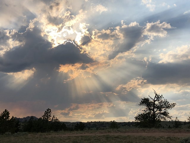 Sunrays shining through the clouds. Frenchie Stamps