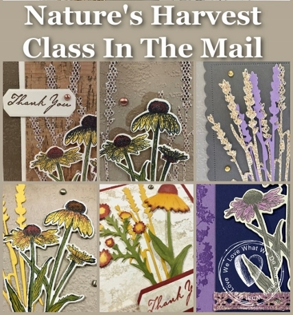 Nature's Harvest Class in the mail with Frenchie's