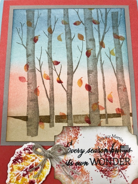 Welcoming Woods Birch Trees in the Fall.