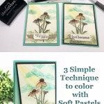Three simple technique to color with Soft Pastel.