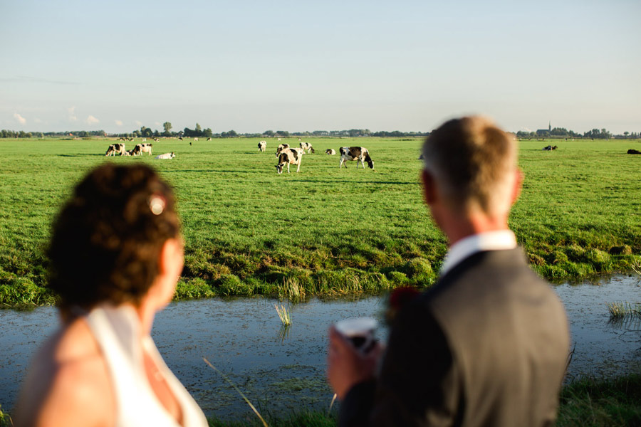 red-cow-themed-wedding-28