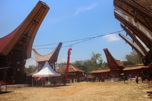 Suites, géométriques, calculs de sommes, terminale, Toraja, Sulawesi