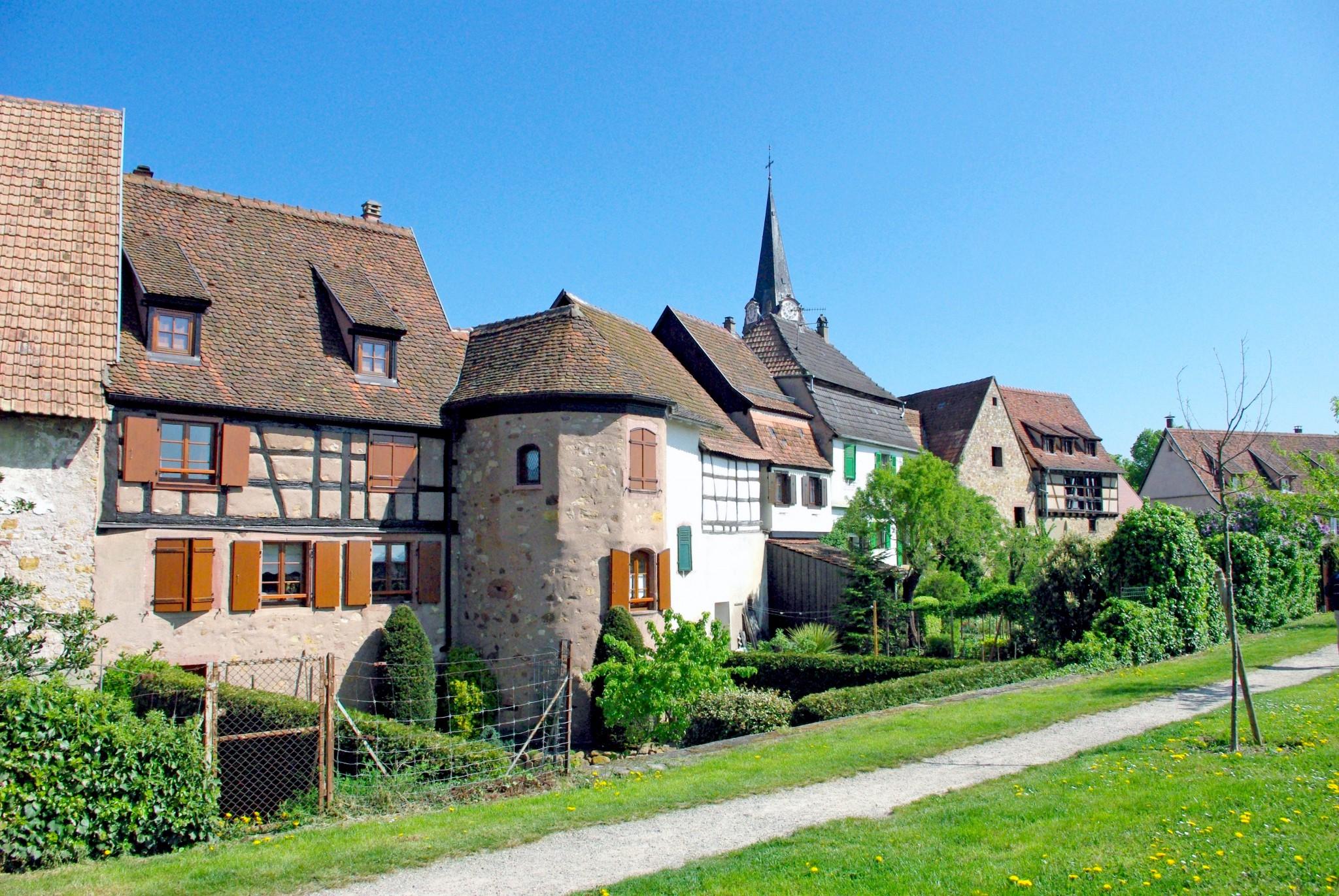 Single bergheim