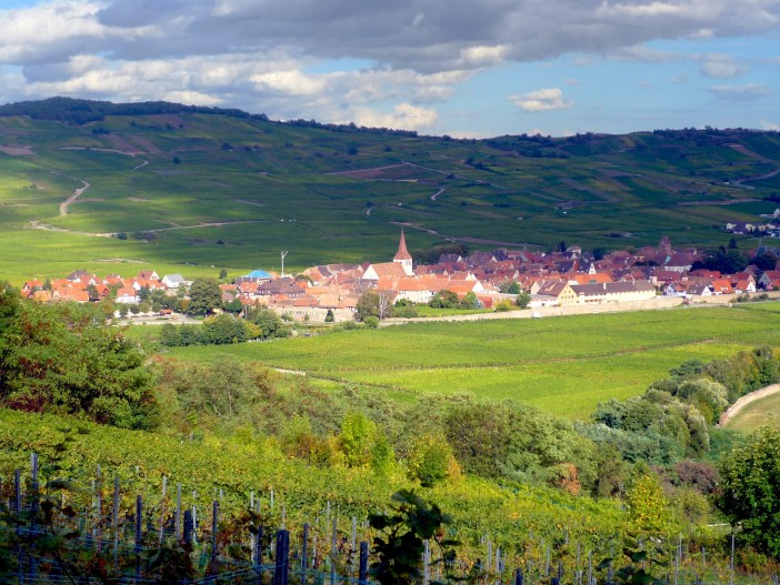 The village of Kientzheim surrounded by the vineyards © French Moments
