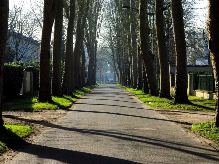 Tree-lined street in the Park of Maisons-Laffitte © French Moments