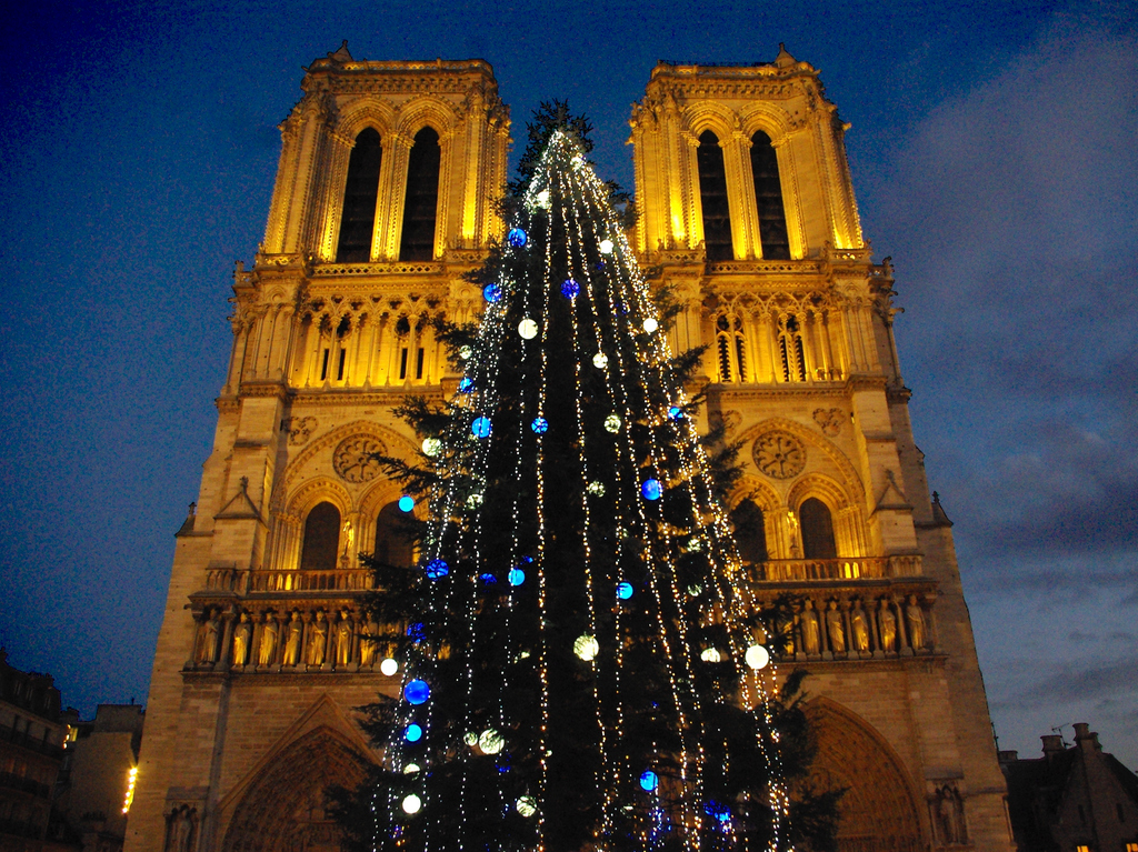No Christmas tree in front of Notre-Dame Cathedral this year ...