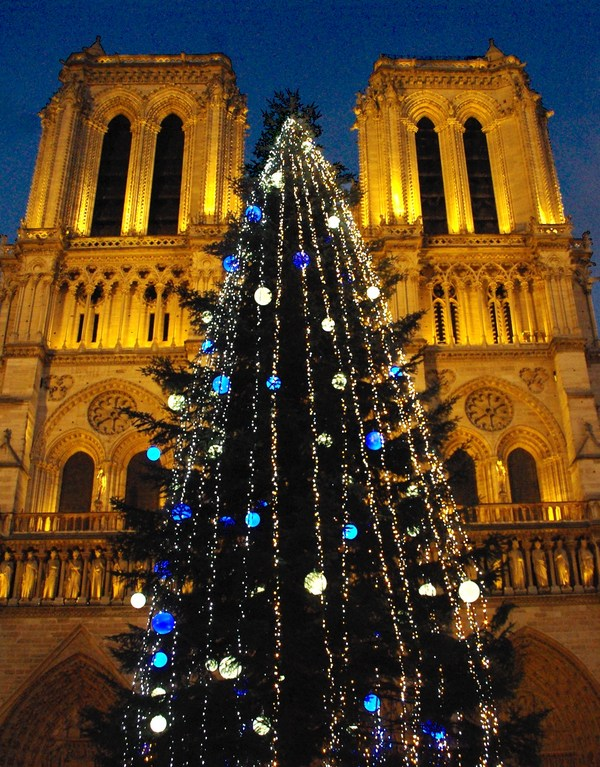 Christmas in Paris: in front of Notre-Dame © French Moments