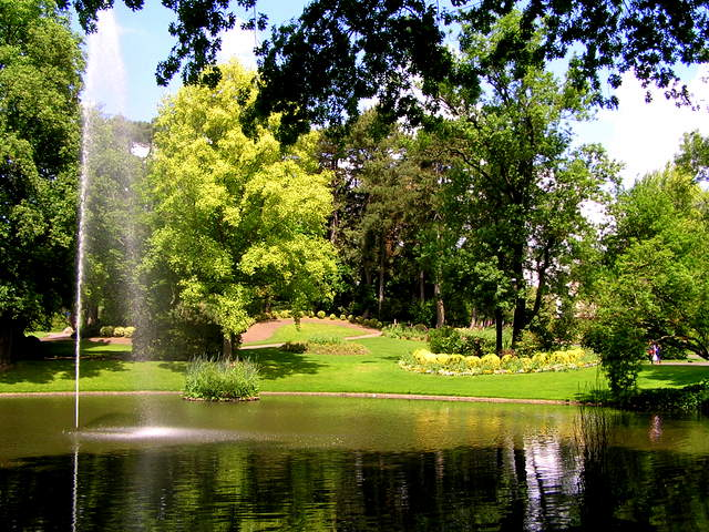 Botanical garden © rosier CC BY-SA 3.0, from wikimedia commons