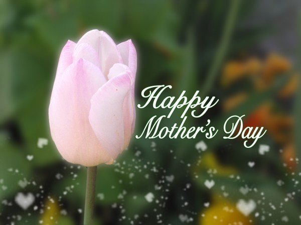 Mother's Day in France and English-speaking countries: La ...