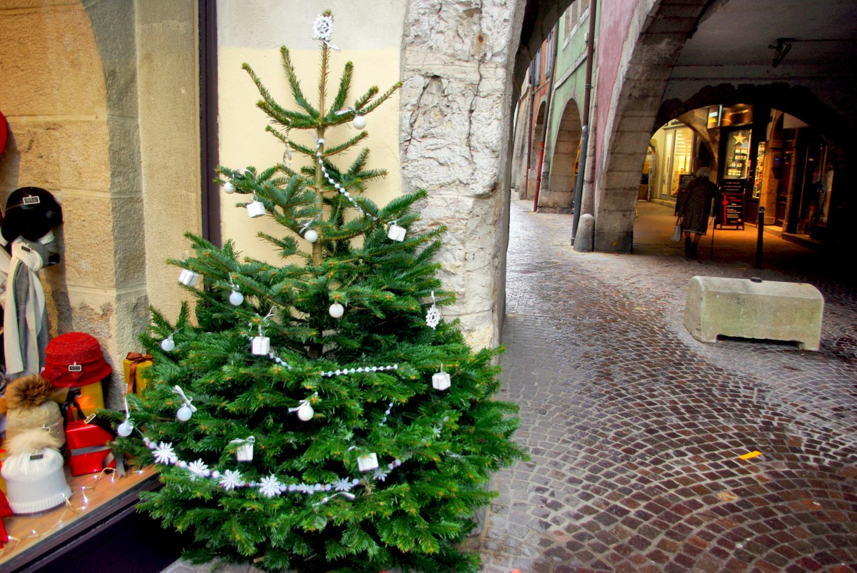 Mingle et Jingle-Arbres de Noël-Blanc